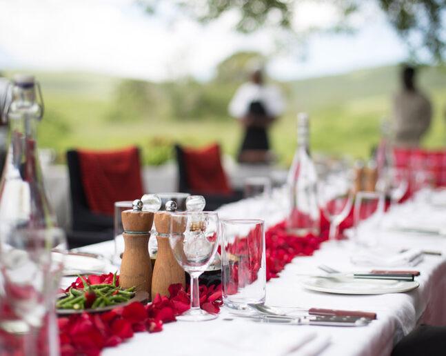 恩戈罗恩戈罗火山口野外大餐 Banquet Dining at Ngorongoro Crater Floor