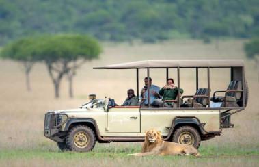 Safari with Confidence: Natural Selection