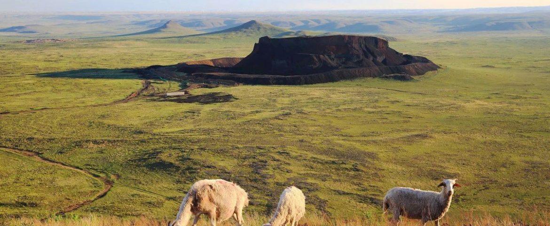 内蒙古 让我们去醉美的草原撒点野